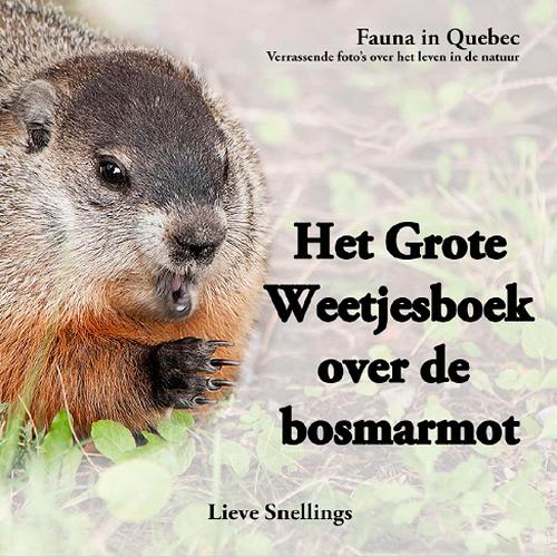 Het Grote Weetjesboek Over De Bosmarmot (Groundhog Secrets)